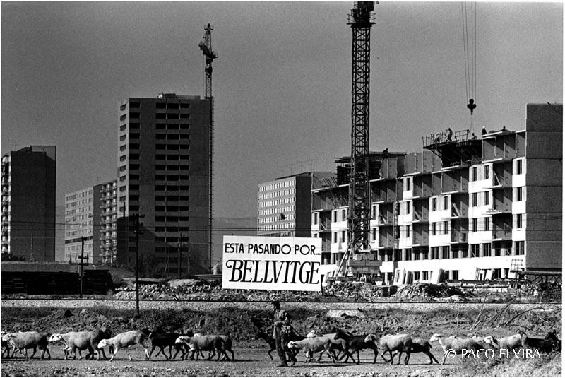 1970bellvitge-011
