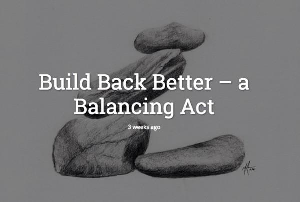 build-back-better-haznet